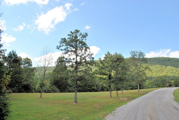 Land (Acreage), Lots/Land/Farm - Elliston, VA (photo 5)