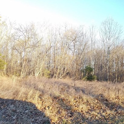 Land (Acreage), Lots/Land/Farm - Union Hall, VA (photo 2)