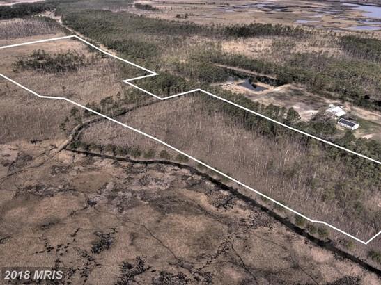 Lot-Land - CRAPO, MD (photo 1)