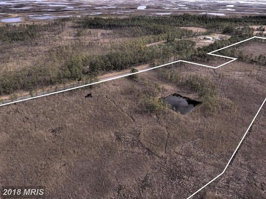 Lot-Land - CRAPO, MD (photo 3)