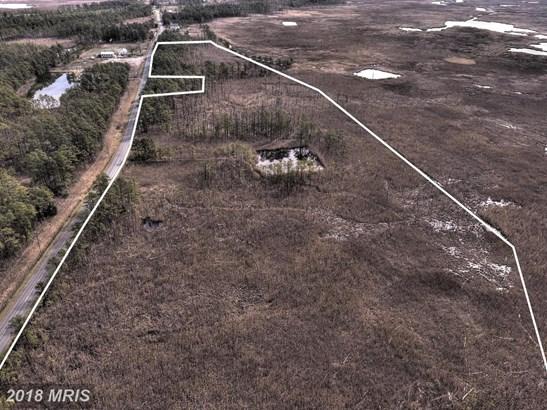 Lot-Land - CRAPO, MD (photo 4)