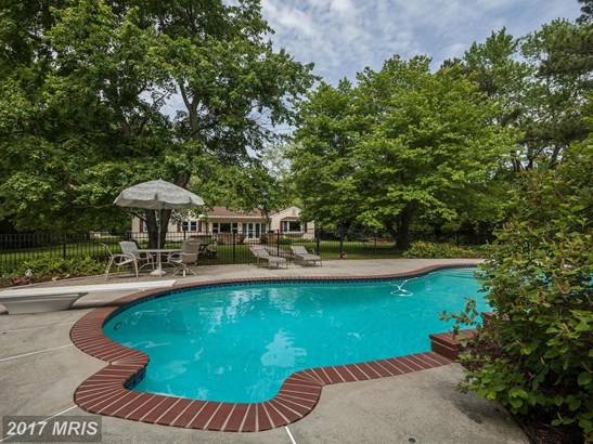 Raised Rancher, Detached - EASTON, MD (photo 4)
