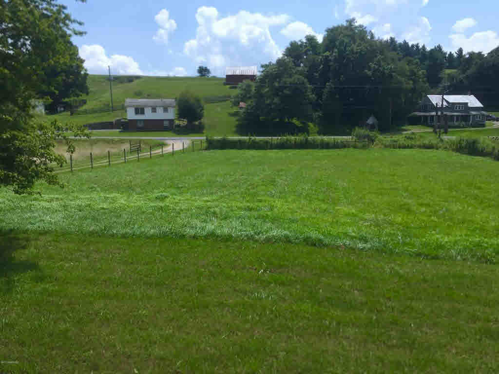 Ranch, Detached - Copper Hill, VA (photo 4)