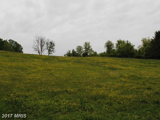 Lot-Land - WOODBINE, MD (photo 5)