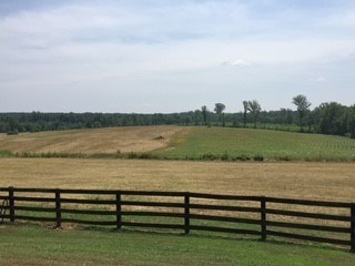 Lots/Land/Farm - Residential, Commercial, Farm, Horses, Timber, Modular/Manufactured, Orchard, Ca (photo 4)