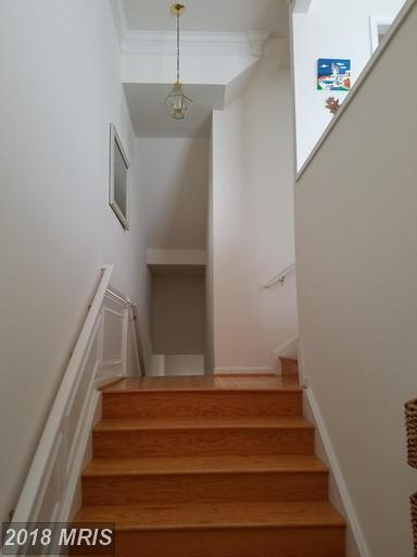 Townhouse, Contemporary - STERLING, VA (photo 2)