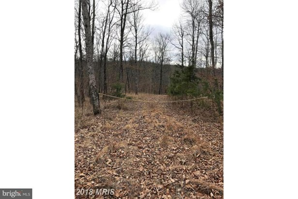 Lots/Land/Farm - FORT ASHBY, WV