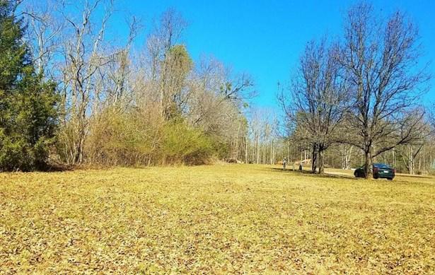 Lot, Lots/Land/Farm - Wirtz, VA (photo 5)