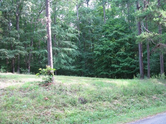 Lots/Land/Farm, Residential, Modular/Manufactured - Clarksville, VA (photo 3)