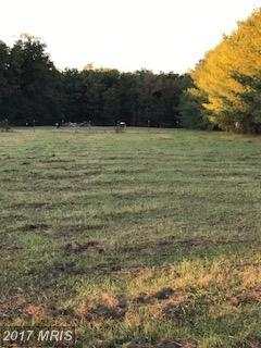 Lot-Land - PARTLOW, VA (photo 3)