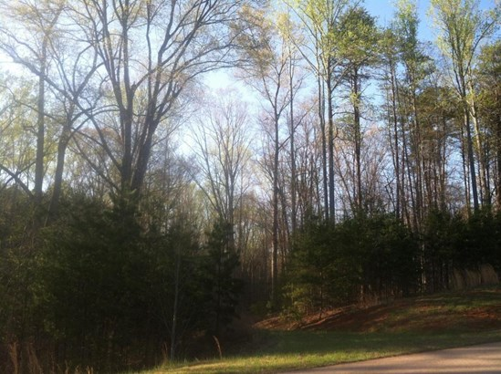 Land (Acreage), Lots/Land/Farm - Lynch Station, VA (photo 1)