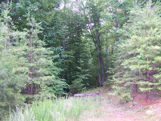 Land (Acreage), Lots/Land/Farm - Lynch Station, VA (photo 3)
