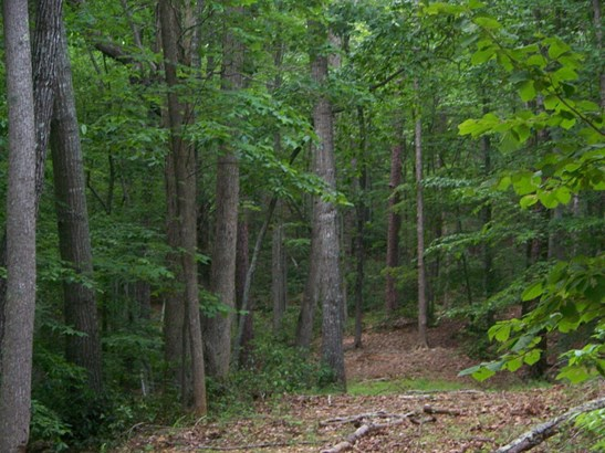 Land (Acreage), Lots/Land/Farm - Lynch Station, VA (photo 5)