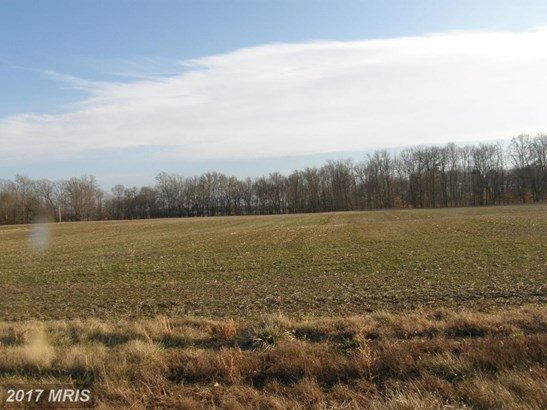 Lot-Land - TRAPPE, MD (photo 5)