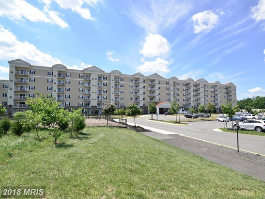 Mid-Rise 5-8 Floors, Traditional - ALEXANDRIA, VA (photo 1)