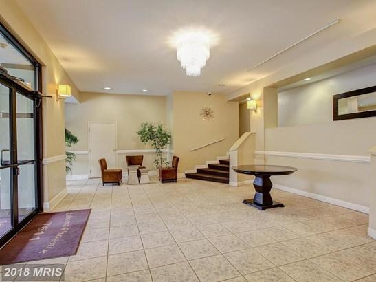 Art Deco, Mid-Rise 5-8 Floors - TAKOMA PARK, MD (photo 4)