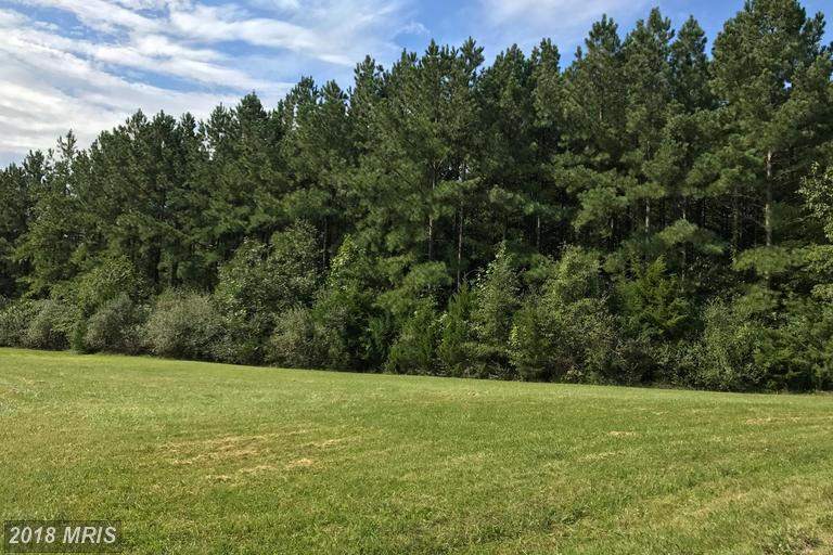 Lot-Land - LIGNUM, VA (photo 2)