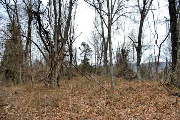 Land (Acreage), Lots/Land/Farm - Riner, VA (photo 1)