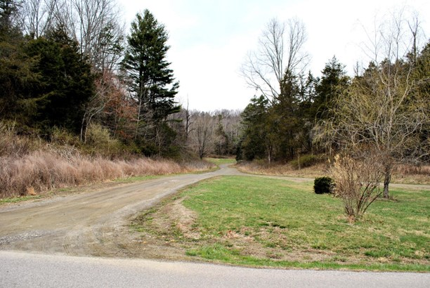 Land (Acreage), Lots/Land/Farm - Riner, VA (photo 3)