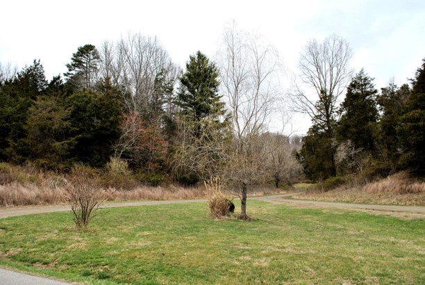 Land (Acreage), Lots/Land/Farm - Riner, VA (photo 4)