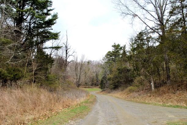 Land (Acreage), Lots/Land/Farm - Riner, VA (photo 5)
