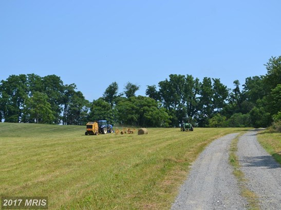 Lot-Land - PURCELLVILLE, VA (photo 3)