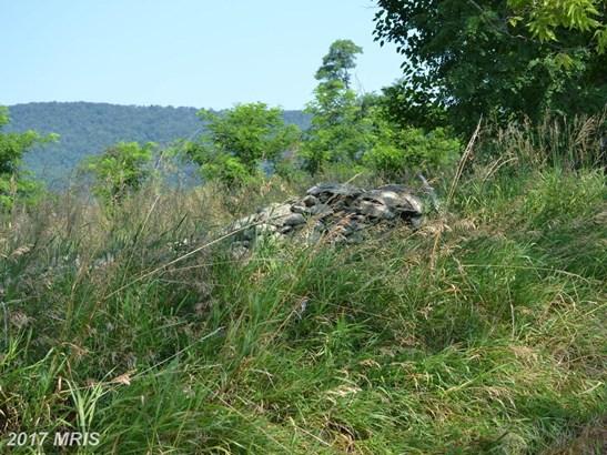 Lot-Land - PURCELLVILLE, VA (photo 4)