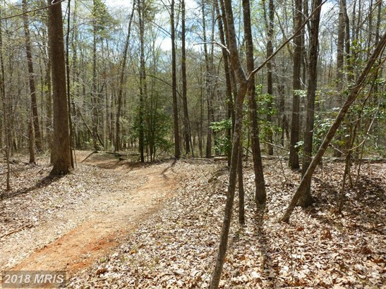 Lot-Land - AMISSVILLE, VA (photo 3)
