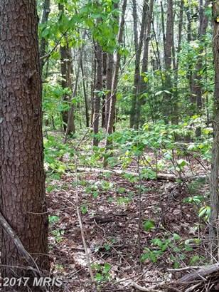Lot-Land - MINERAL, VA (photo 4)