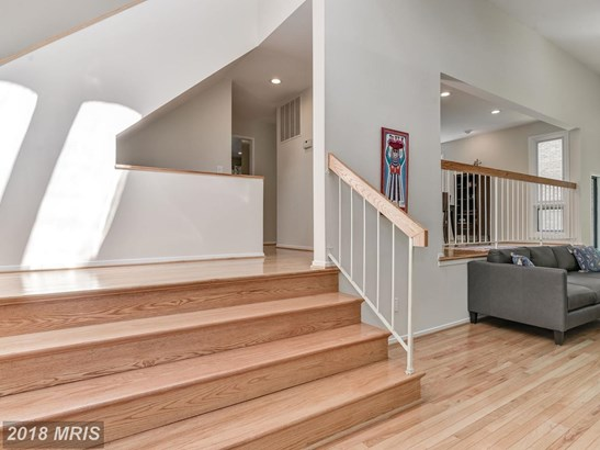 Contemporary, Detached - ROCKVILLE, MD (photo 4)