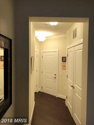 Garden 1-4 Floors, Other - FAIRFAX, VA (photo 3)