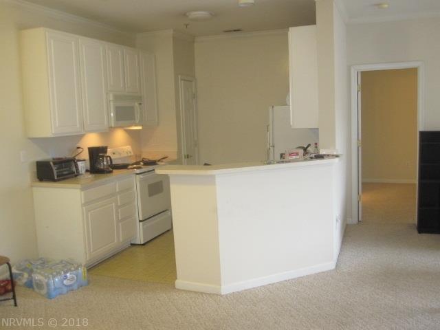 Condominium, Condo - Blacksburg, VA (photo 2)