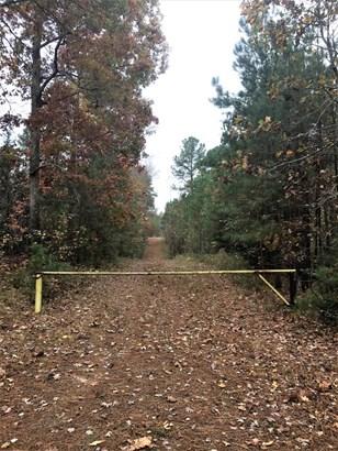 Land - Brodnax, VA (photo 2)