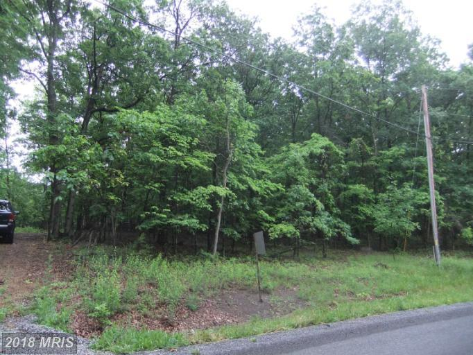 Lot-Land - WARFORDSBURG, PA (photo 3)