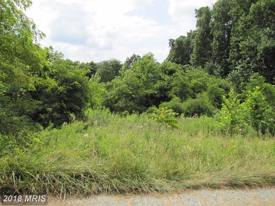 Lot-Land - CONOWINGO, MD (photo 4)