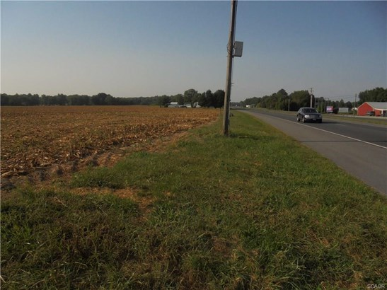 Commercial Unimproved - Greenwood, DE (photo 3)