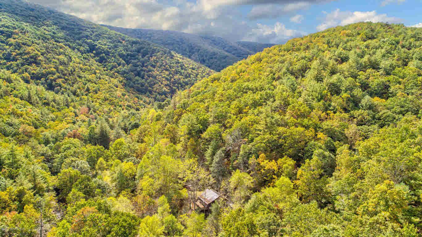 Detached, Cabin, Log - Hiwassee, VA (photo 2)