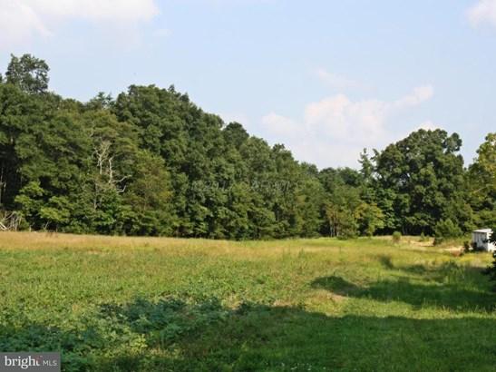 Land - MARDELA SPRINGS, MD (photo 1)