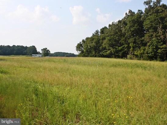 Land - MARDELA SPRINGS, MD (photo 2)