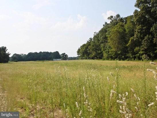 Land - MARDELA SPRINGS, MD (photo 4)