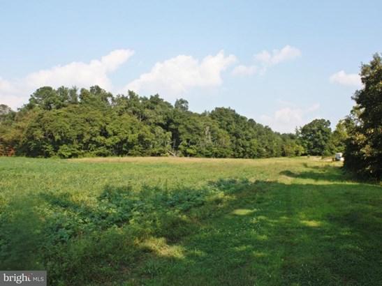 Land - MARDELA SPRINGS, MD (photo 5)