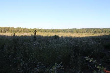 Land/Lots - Kenbridge, VA (photo 1)