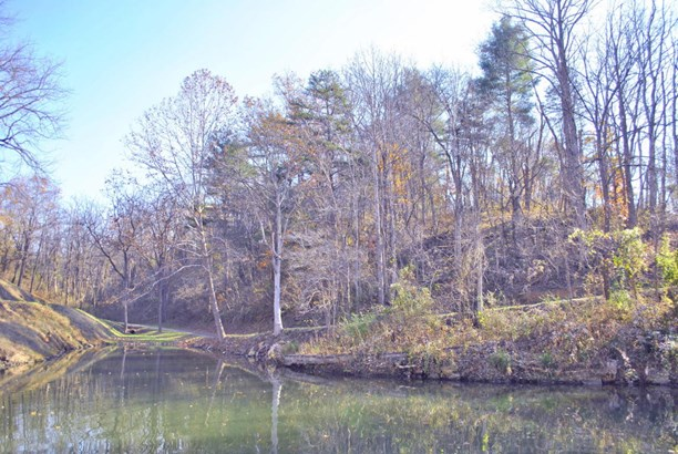 Lots/Land - Pulaski, VA (photo 2)
