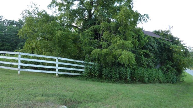 Lot, Lots/Land/Farm - Gretna, VA (photo 4)
