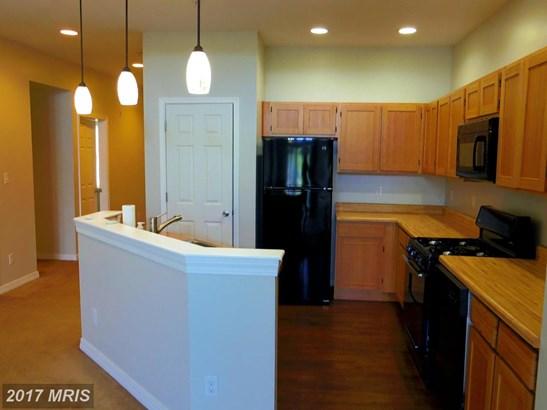 Garden 1-4 Floors, Contemporary - PERRYVILLE, MD (photo 4)