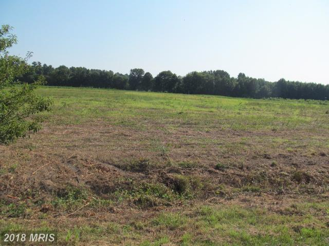 Lot-Land - DENTON, MD (photo 4)