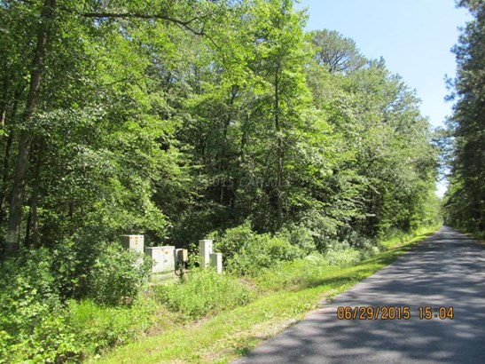 Unimprvd Lots/Land - Parsonsburg, MD (photo 4)