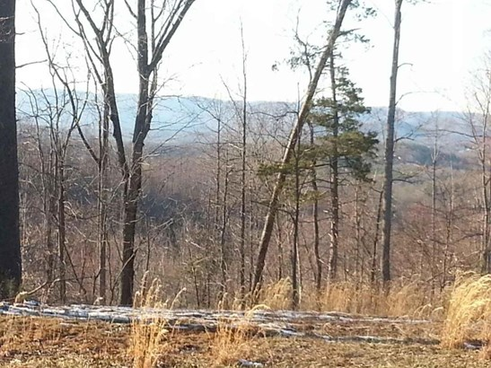 Land (Acreage), Lots/Land/Farm - Henry, VA (photo 1)