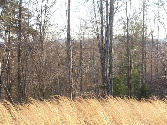 Land (Acreage), Lots/Land/Farm - Henry, VA (photo 2)