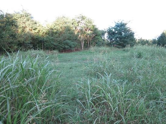 Lot, Lots/Land/Farm - Roanoke, VA (photo 3)